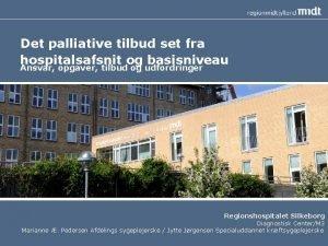 Det palliative tilbud set fra hospitalsafsnit og basisniveau