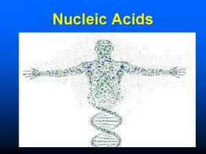 Nucleic Acids 1029 n Put away phoneearbuds WARM