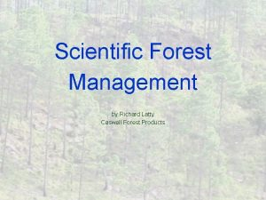 Scientific Forest Management by Richard Latty Caswell Forest