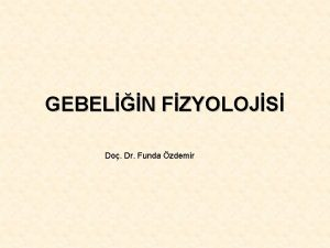 GEBELN FZYOLOJS Do Dr Funda zdemir FERTLZASYON Fimbrialar