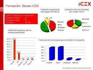 Formacin Becas ICEX Valoracin organizacin del programa de