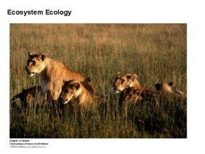Ecosystem Ecology Ecosystem Ecology I Introduction Ecosystem an