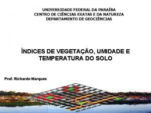 UNIVERSIDADE FEDERAL DA PARABA UNIVERSIDADE CENTRO DE CINCIAS
