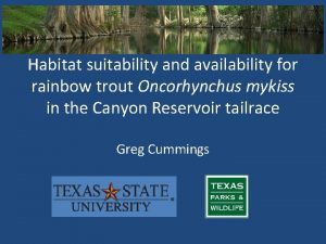Habitat suitability and availability for rainbow trout Oncorhynchus