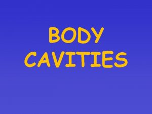 BODY CAVITIES BODY CAVITIES Spaces within the body