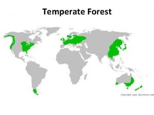 Temperate Forest Temperate Forest Geography Northern Hemisphere Southern