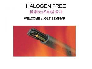 HALOGEN FREE WELCOME at GLT SEMINAR 2002 02
