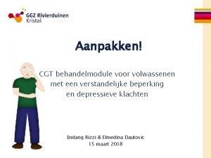 Aanpakken CGT behandelmodule voor volwassenen met een verstandelijke