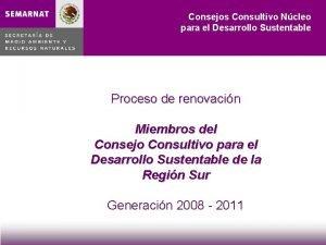 Consejos Consultivo Ncleo para el Desarrollo Sustentable Proceso
