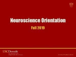 Neuroscience Orientation Fall 2019 Neuroscience Orientation 2019 Welcome