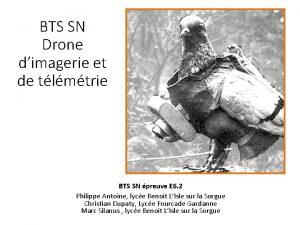 BTS SN Drone dimagerie et de tlmtrie BTS