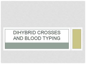 DIHYBRID CROSSES AND BLOOD TYPING DIHYBRID CROSSES Have