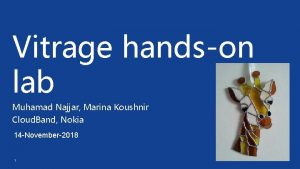 Vitrage handson lab Muhamad Najjar Marina Koushnir Cloud