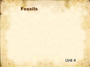 Fossils Unit 4 What are fossils Fossils are