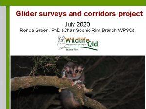 Glider surveys and corridors project July 2020 Ronda