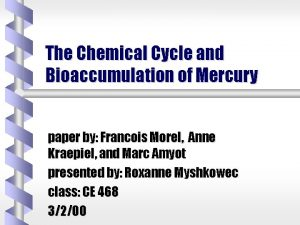 The Chemical Cycle and Bioaccumulation of Mercury paper