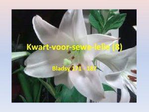 Kwartvoorsewelelie 8 Bladsy 171 187 Bladsy 171 Bettie