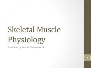 Skeletal Muscle Physiology Presented by Ifeoma Ezeonyebuchi 1