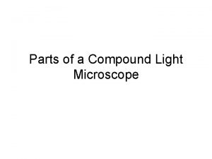 Parts of a Compound Light Microscope Mirror Light