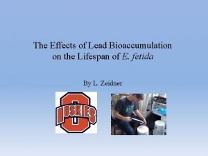 The Effects of Lead Bioaccumulation on the Lifespan