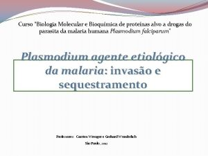 Curso Biologia Molecular e Bioqumica de protenas alvo