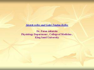 Stretch reflex and Golgi Tendon Reflex Dr Faten