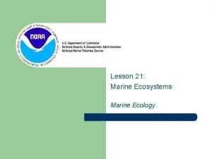 Lesson 21 Marine Ecosystems Marine Ecology Life in