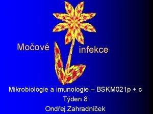 Moov infekce Mikrobiologie a imunologie BSKM 021 p