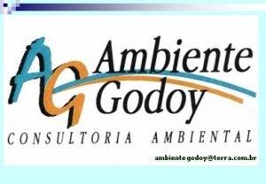 LICENCIAMENTO AMBIENTAL ambiente godoy consultoria ambiental ltda INSTRUMENTOS