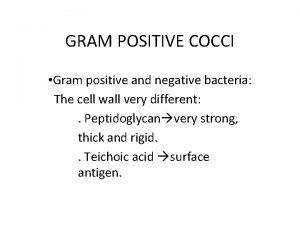 GRAM POSITIVE COCCI Gram positive and negative bacteria
