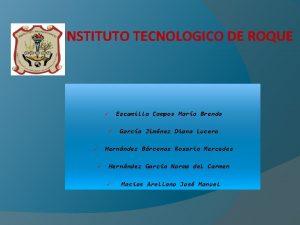 INSTITUTO TECNOLOGICO DE ROQUE Escamilla Campos Mara Brenda