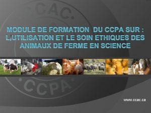 MODULE DE FORMATION DU CCPA SUR LUTILISATION ET
