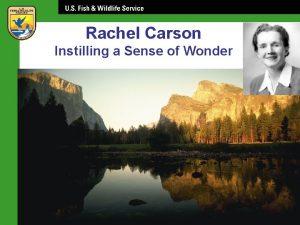 Rachel Carson Instilling a Sense of Wonder Rachel