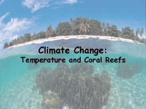 Climate Change Temperature and Coral Reefs Climate Change