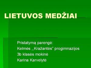 LIETUVOS MEDIAI Pristatym pareng Kelms Kraants progimnazijos 3