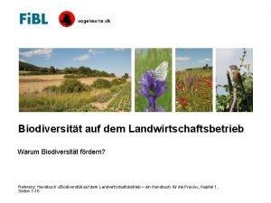 Biodiversitt auf dem Landwirtschaftsbetrieb Warum Biodiversitt frdern Referenz