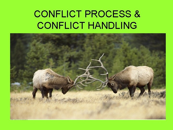 CONFLICT PROCESS CONFLICT HANDLING WHAT IS CONFLICT Conflict