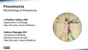 Pneumonia Microbiology of Pneumonia J Matthew Velkey Ph