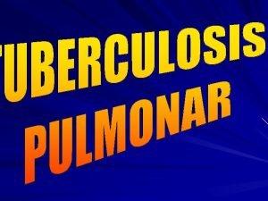 TUBERCULOSIS PULMONAR TUBERCULOSIS PULMONAR Aspectos bsicos Mycobacterium tuberculoso