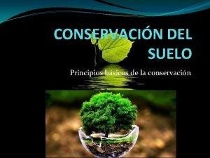 CONSERVACIN DEL SUELO Principios bsicos de la conservacin