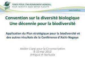 Convention sur la diversit biologique Une dcennie pour