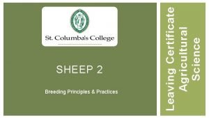 Breeding Principles Practices Leaving Certificate Agricultural Science SHEEP
