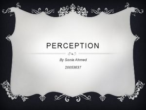 PERCEPTION By Sonia Ahmed 20053637 PERCEPTION PITCH My