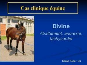 Cas clinique quine Divine Abattement anorexie tachycardie Karine