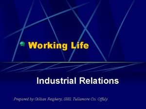 Working Life Industrial Relations Prepared by Gillian Feighery