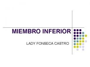 MIEMBRO INFERIOR LADY FONSECA CASTRO MIEMBRO INFERIOR l