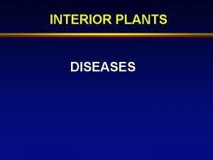 INTERIOR PLANTS DISEASES Disease Definition v Disease abnormality