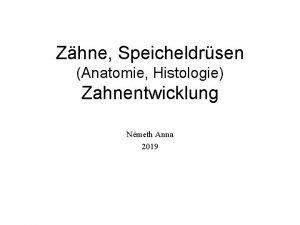 Zhne Speicheldrsen Anatomie Histologie Zahnentwicklung Nmeth Anna 2019