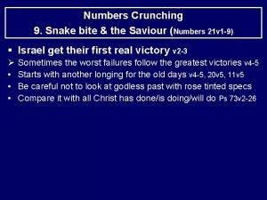 Numbers Crunching 9 Snake bite the Saviour Numbers