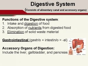 Digestive System Consists of alimentary canal and accessory